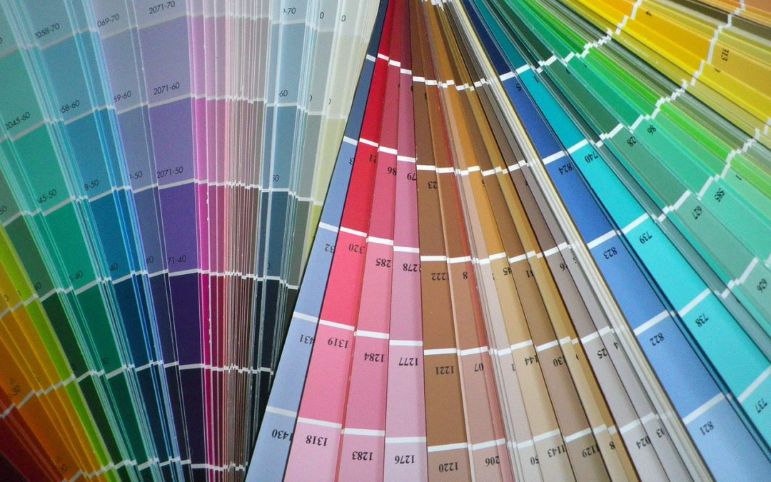 Paint Swatches for choosing paint colors